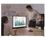 Sapphire 102cm x 76cm - 50 inch - Desktop Projector Screen